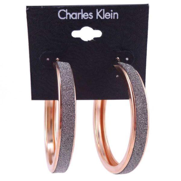 Cercei aurii rotunzi Charles Klein 2